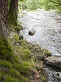 Nukarinkoski. The Nukarinkoski rapids in the River Vantaanjoki in Finland Royalty Free Stock Photography