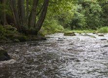 Nukarinkoski. The Nukarinkoski rapids in the River Vantaanjoki in Finland royalty free stock photos