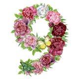 Numéro neuf des fleurs d'aquarelle illustration stock