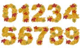 Numéros de lames d'automne photos stock