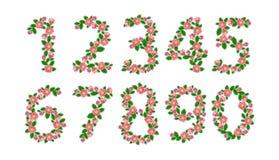 Numéros réglés Image stock