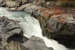 Numa Creek Falls av den Icefield gångallén, Alberta Canada Royaltyfria Foton