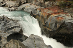 Numa Creek Falls fuori dalla strada panoramica di Icefield, Alberta Canada Fotografie Stock Libere da Diritti