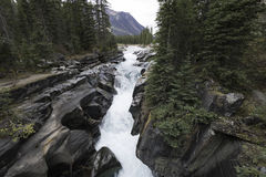 Numa Falls, Kootenay National Park Stock Photography