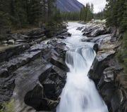 Numa Falls, parque nacional de Kootenay Imagenes de archivo