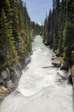 Numa waterfall at Kootenay National Park (Canada) Royalty Free Stock Images