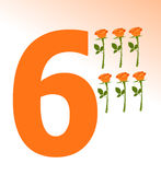 Number 6 Royalty Free Stock Image