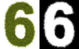 Number 6 of the grass with alpha channel. 3D number 6 of the grass with alpha channel Royalty Free Stock Image