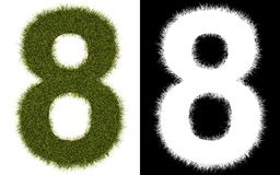 Number 8 of the grass with alpha channel Royalty Free Stock Images