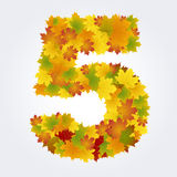 Number 5 of the autumn leaves Royalty Free Stock Photo