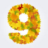 Number 9 of the autumn leaves Royalty Free Stock Images