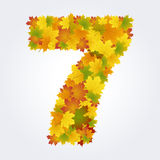 Number 7 of the autumn leaves Stock Images