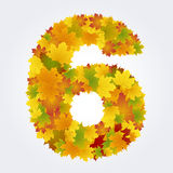 Number 6 of the autumn leaves Stock Photos