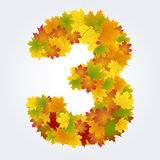 Number 3 of the autumn leaves Stock Image