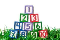 Number blocks stacked on grass Royalty Free Stock Photos