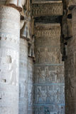 A number of columns in the temple. Of Dendera Stock Photography