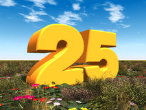 The Number 25 Royalty Free Stock Photos