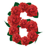 Number 6 cute roses floral illustration Royalty Free Stock Photography