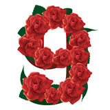Number 9 cute roses floral illustration Royalty Free Stock Photo