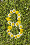 Number eight from flower numbers Stock Photos