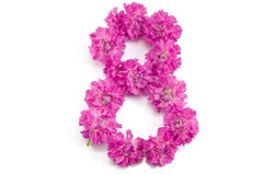 The number eight from flowers. The number eight made of flowers Royalty Free Stock Photography