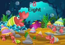 Number eight hermit crab under the sea vector. Illustration of number eight hermit crab under the sea vector Stock Photos