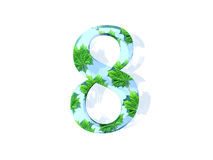 Number eight with leaves. A view of the number eight with a theme of green leaves or nature, isolated on a white background Royalty Free Stock Photo