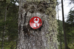 Number eight - 8. A red number eight nailed on a tree trunk Royalty Free Stock Photos