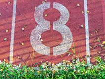 Number eight was painted with white color on sports ground Royalty Free Stock Photo