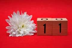 Number eleven with a white daisy. On a red background stock image