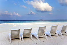 A number of empty beach chairs before the sea at sunrise Stock Images