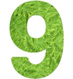 Number 9 with fern texture, isolated on white background, font Helvetica World, bold royalty free stock photography