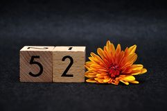 Number fifty two with an orange daisy. On a black background royalty free stock photos