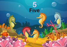 Number five sea horse under the sea vector Royalty Free Stock Image