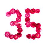 Number 35 from flowers of a red and pink rose on a white background. Typographical element for designtwenty twotwenty four royalty free stock photography
