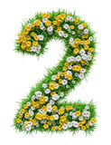 Number 2 of Green Grass And Flowers Royalty Free Stock Photography