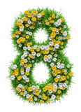 Number 8 of Green Grass And Flowers Royalty Free Stock Image