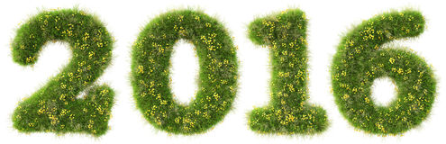Number. 2016 from the green grass.  on white background Stock Image