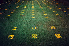 Number on Green Ground Royalty Free Stock Image