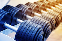 Number of heavy dumbbells on rack Stock Photography