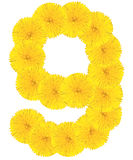Number 6 made from dandelion flower. Isolated on white background royalty free stock photography