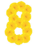 Number 8 made from dandelion flower. Isolated on white background stock photo
