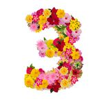 Number 1 made from flower isolated on white background. Whit clipping path stock photo