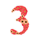 Number 3. From many flower Royalty Free Stock Photo