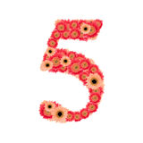 Number 5. From many flower Royalty Free Stock Photos