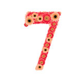Number 7. From many flower Royalty Free Stock Photos