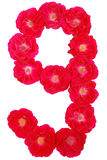 Number nine laid out by roses Royalty Free Stock Photography