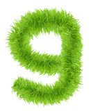 Number Nine made of green grass. Royalty Free Stock Photography