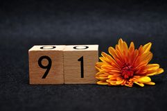 Number ninety one with an orange daisy. On a black background stock image