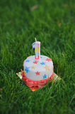 Number one birthday candle on cupcake with stars on a green grass Stock Photos